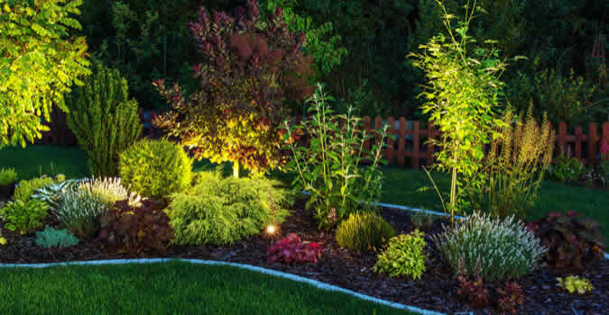 backyard designs - Landscape Lighting - Wilmington, NC Chop Chop Landscaping