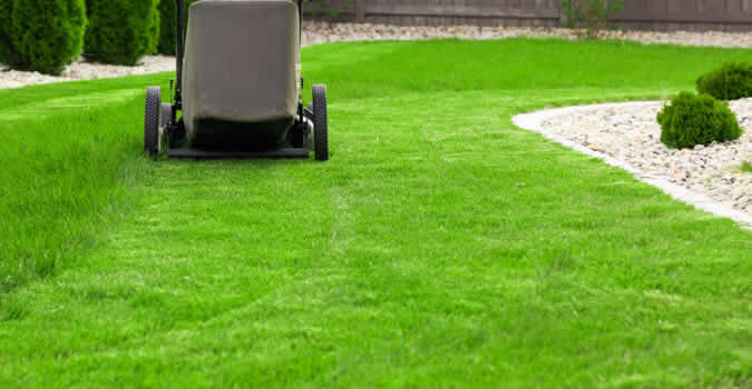 Lawn Care Wilmington Nc Chop Chop Landscaping